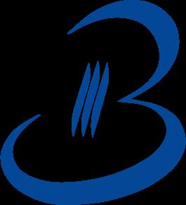 BDI System SA